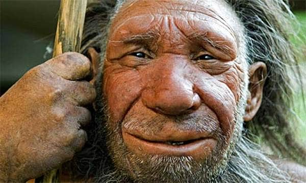 Neanderthals Had Few Lefties. Or Maybe They Ate Them.